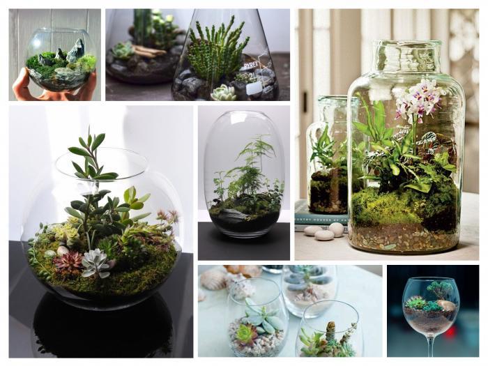 Un mini-jardin pour votre grand plaisir !